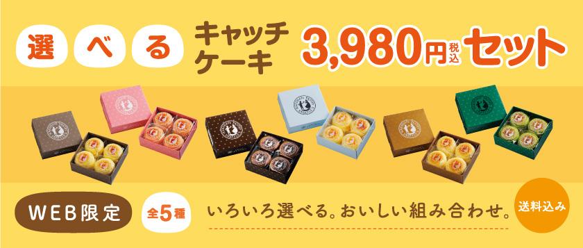 選べるキャッチケーキ3,980円セット